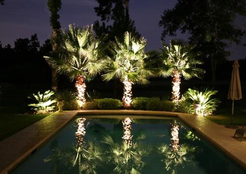 Không gian ngoài trời thêm lung linh nhờ sử dụng đèn LED
