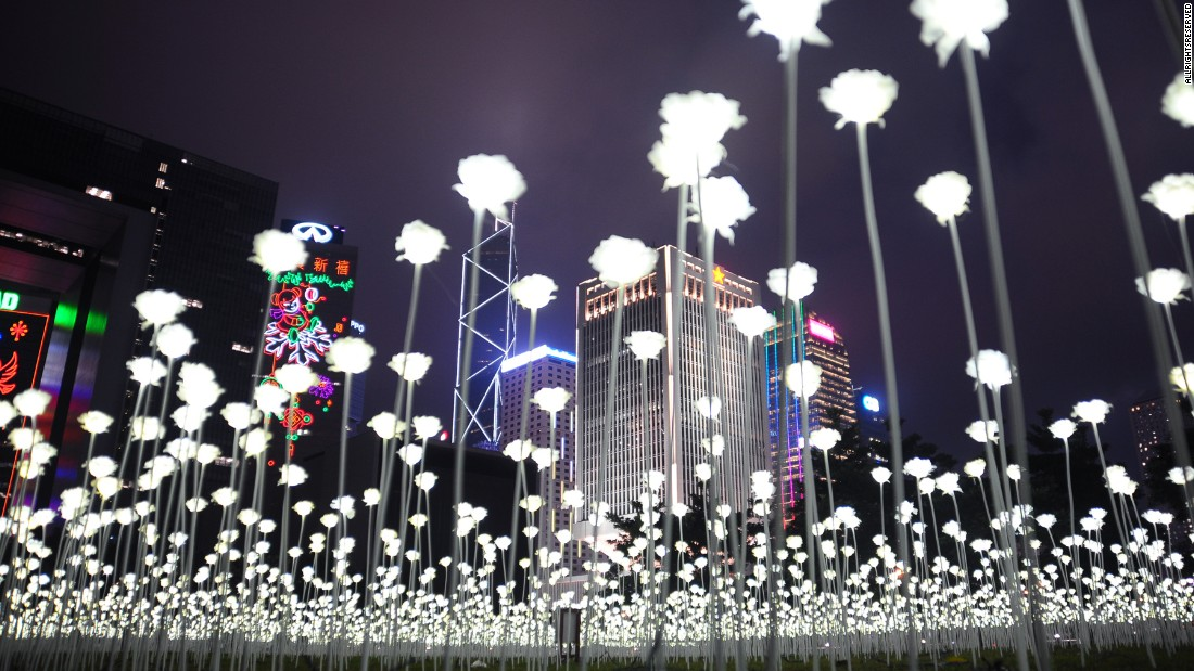 Hoa hồng làm từ đèn LED đẹp lung linh